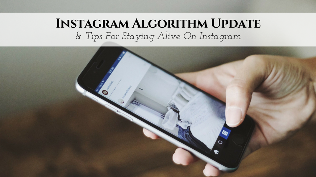 Instagram Algorithm Update & Tips For Staying Alive On Instagram