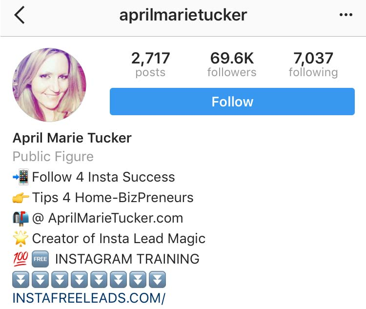 Instagram Marketing Strategy - Your Bio