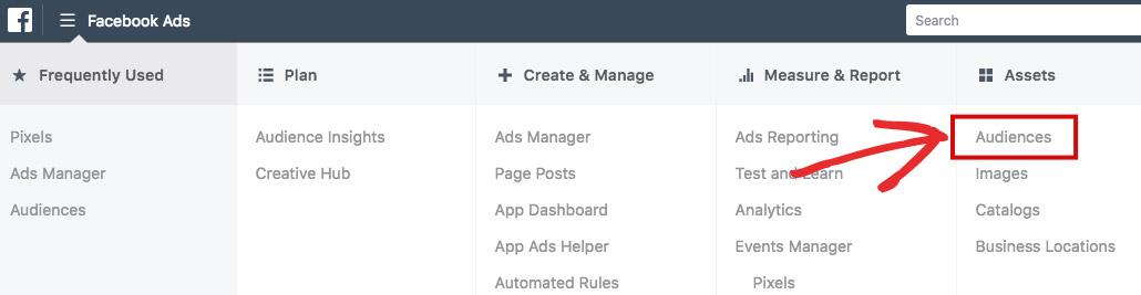 Facebook Ads Manager Audience
